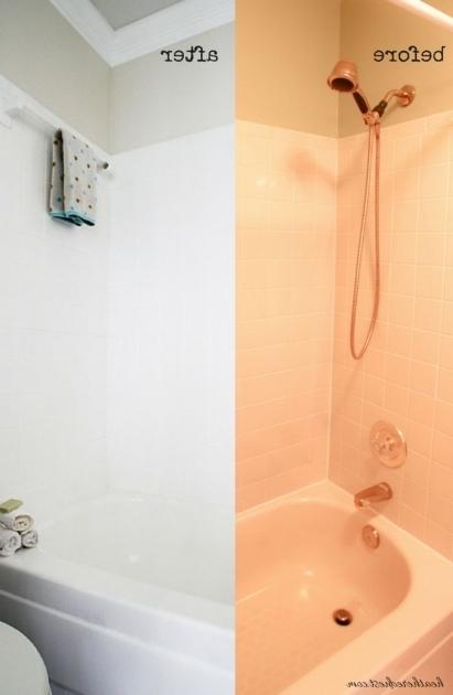 Can You Paint A Plastic Bathtub Bathtub Designs