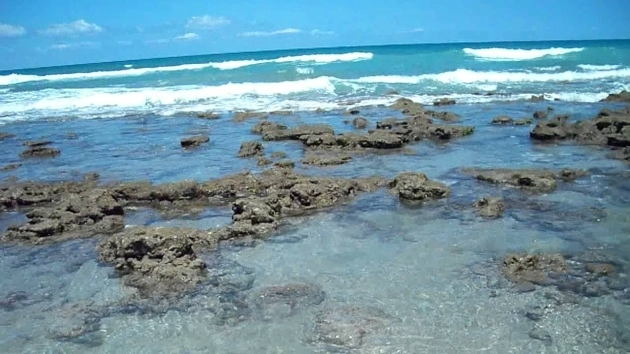Image of Bathtub Beach Florida Bathtub Reef Beach Youtube