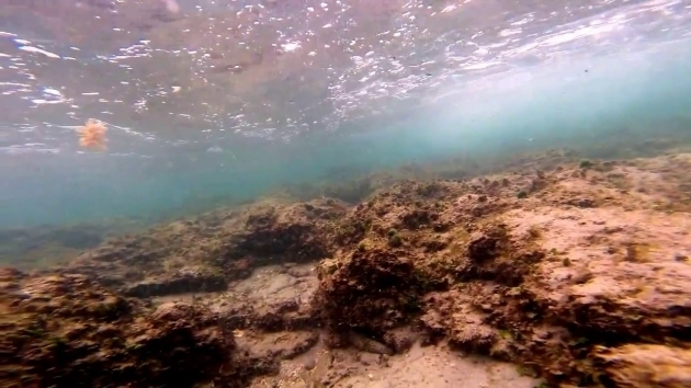 Stunning Bathtub Reef Beach Bathtub Reef Beach Youtube