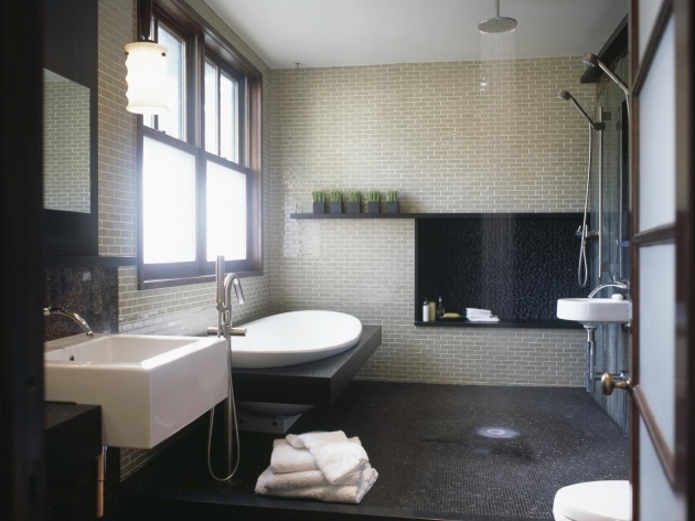 Walk In Tub Designs Pictures Ideas Tips From Hgtv: Bathrooms With Soaking Tubs