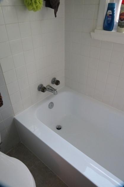 Gorgeous Bathtub Skins Bathroom Glorious Bathtub Liners And Tub Liners Bathtub