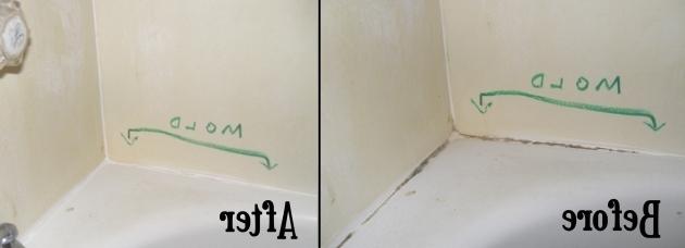 Remarkable How To Clean The Bathtub Clean Mold From Bathtub Caulk Random Creativity