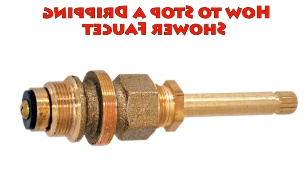Marvelous How To Fix A Leaky Bathtub Faucet How To Stop A Dripping Shower Faucet Repair Leaky Bathtub Water