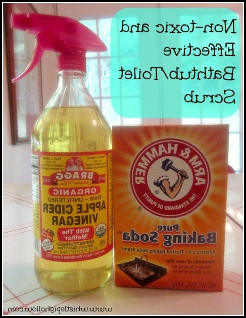 Wonderful Homemade Bathtub Cleaner Homemade Cleaners That Work Whistle Pig Hollow